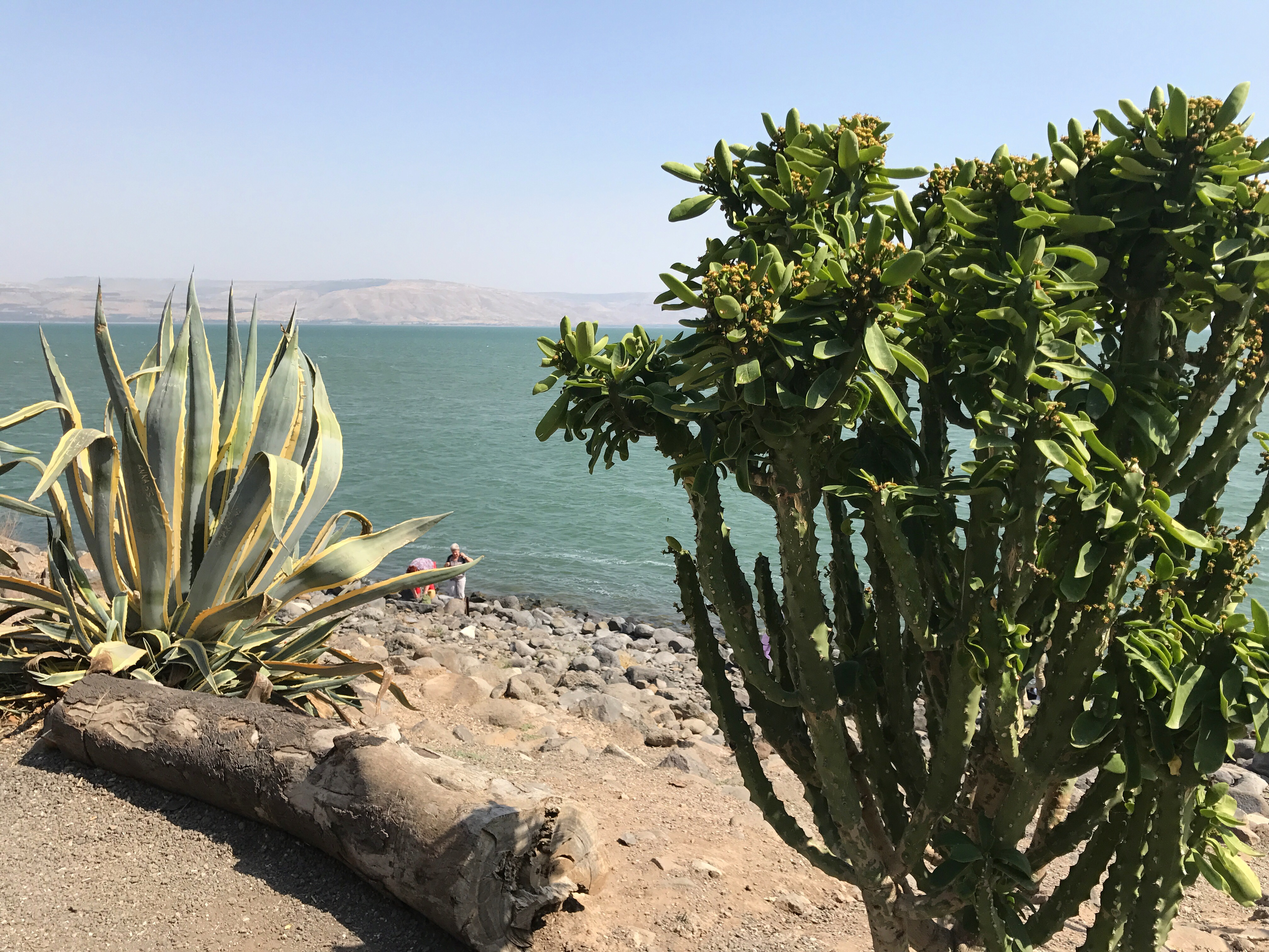 A peaceful day on the Sea of Galilee, visiting the ruins at Capernaum