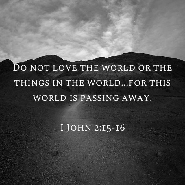 """""""Do Not Love the World"""": A Spiritual Application of Burning Platform Theory 